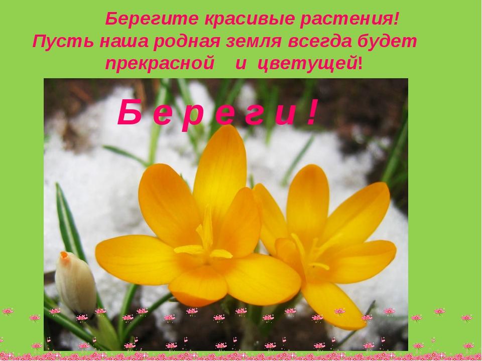 Берегите красивые растения! Пусть наша родная земля всегда будет прекрасной...