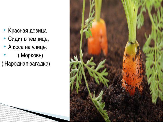 Перенос значения на основании сходства-очеловечевание-олицетворение Прямое зн...