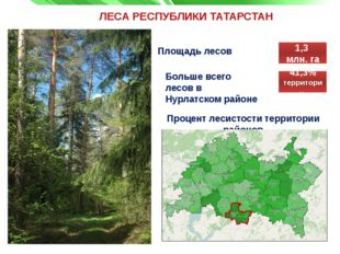 ЛЕСА РЕСПУБЛИКИ ТАТАРСТАН Площадь лесов Процент лесистости территории районов