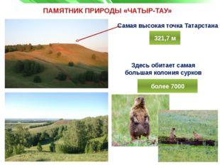 ПАМЯТНИК ПРИРОДЫ «ЧАТЫР-ТАУ» Самая высокая точка Татарстана Здесь обитает сам