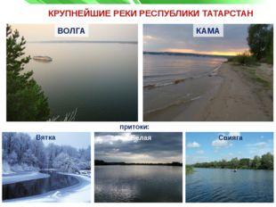 КРУПНЕЙШИЕ РЕКИ РЕСПУБЛИКИ ТАТАРСТАН притоки: ВОЛГА Свияга КАМА Белая Вятка