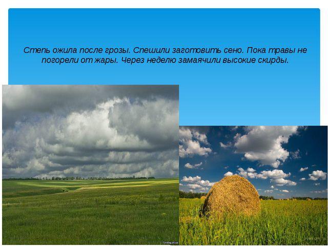 Степь ожила после грозы. Спешили заготовить сено. Пока травы не погорели от ж...