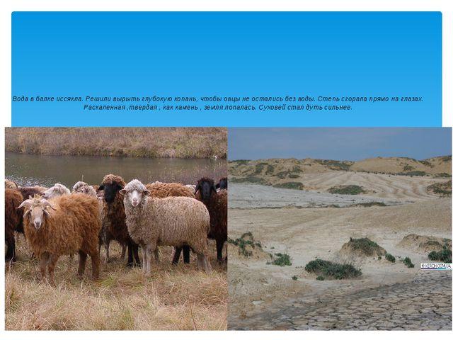 Вода в балке иссякла. Решили вырыть глубокую копань, чтобы овцы не остались б...