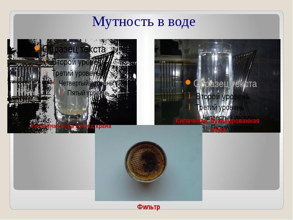 Мутность в воде Кипяченая вода из-под крана Кипяченая бутилированная вода Фи...