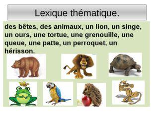 Lexique thématique. des bêtes, des animaux, un lion, un singe, un ours, une t