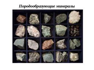 Породообразующие минералы