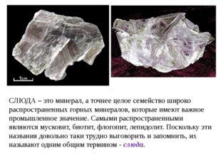 СЛЮДА – это минерал, а точнее целое семейство широко распространенных горных