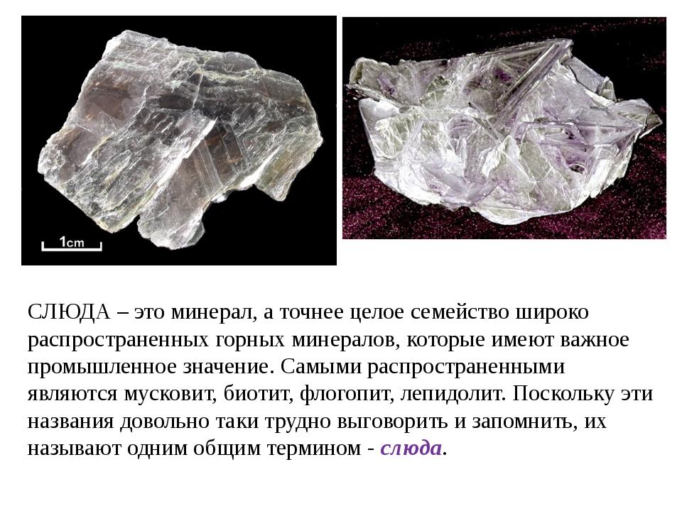 СЛЮДА – это минерал, а точнее целое семейство широко распространенных горных...