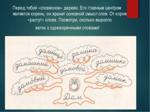 Перед тобой «словесное» дерево. Его главным центром является корень, он храни
