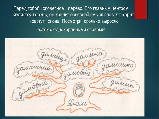 Перед тобой «словесное» дерево. Его главным центром является корень, он храни...