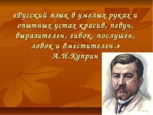 «Русский язык в умелых руках и опытных устах красив, певуч, выразителен, гибо