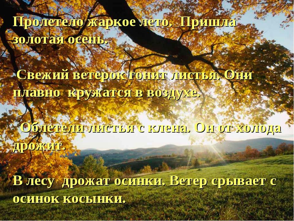 Пролетело жаркое лето. Пришла золотая осень. Свежий ветерок гонит листья. Они...
