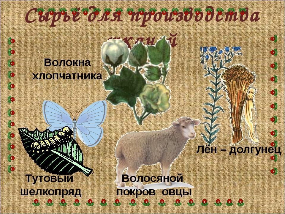 Сырьё для производства тканей Тутовый шелкопряд Волосяной покров овцы Лён – д...