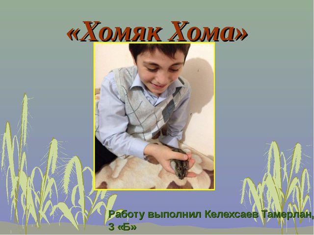 «Хомяк Хома» Работу выполнил Келехсаев Тамерлан, 3 «Б»
