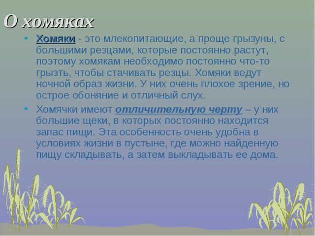 О хомяках Хомяки - это млекопитающие, а проще грызуны, с большими резцами, ко...