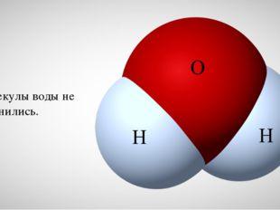 Молекулы воды не изменились. H H O