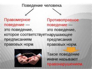 Поведение человека. Правомерное поведение — это поведение, которое соответств