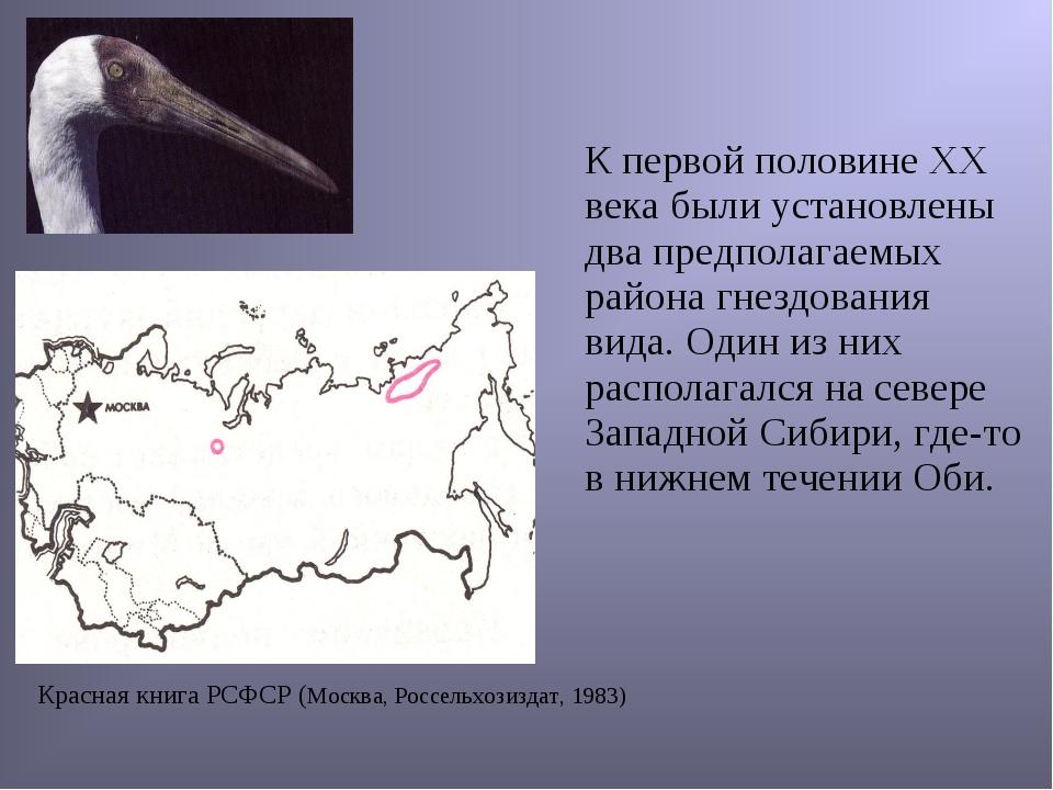 Красная книга РСФСР (Москва, Россельхозиздат, 1983) К первой половине ХХ век...