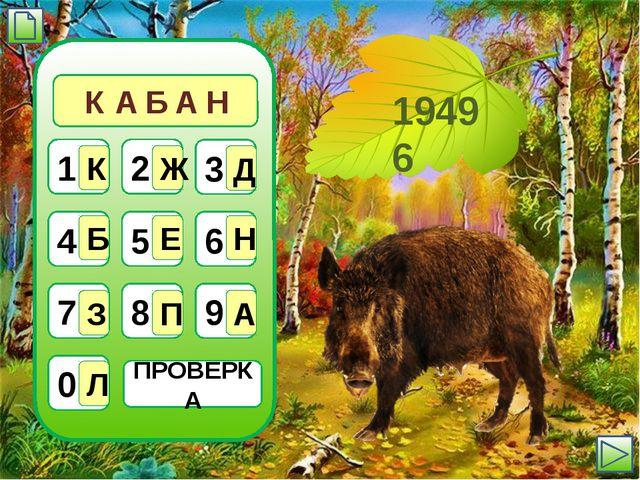 ПРОВЕРКА 19496 1 К 2 Ж 3 Д 4 Б 5 Е 6 Н 7 З 8 П 9 А 0 Л А К А Б Н
