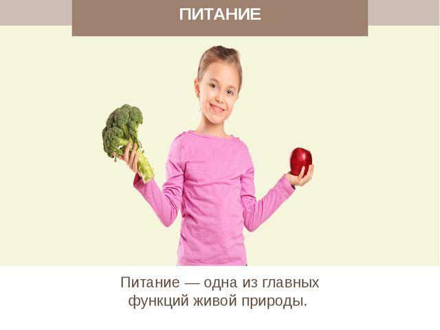 ПИТАНИЕ Питание — одна из главных функций живой природы.
