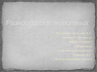 Выполнил: Добычин А.С. ученик 3 «Б» класса МБОУ СОШ№ 3 г.Моршанска Классный р
