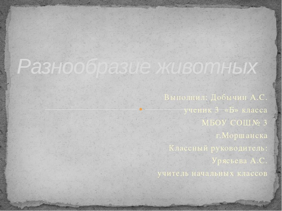 Выполнил: Добычин А.С. ученик 3 «Б» класса МБОУ СОШ№ 3 г.Моршанска Классный р...