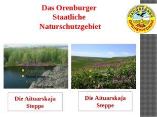 Das Orenburger Staatliche Naturschutzgebiet Die Aituarskaja Steppe Die Aituar