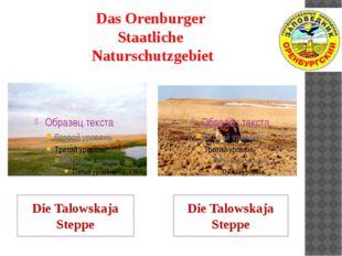 Das Orenburger Staatliche Naturschutzgebiet Die Talowskaja Steppe Die Talowsk