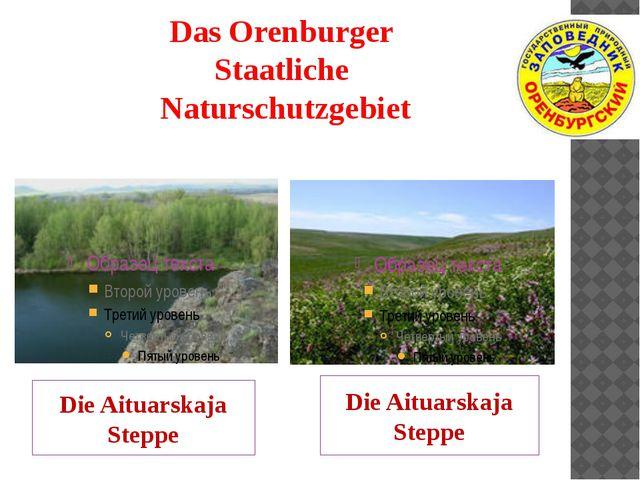 Das Orenburger Staatliche Naturschutzgebiet Die Aituarskaja Steppe Die Aituar...