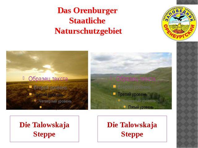 Das Orenburger Staatliche Naturschutzgebiet Die Talowskaja Steppe Die Talowsk...