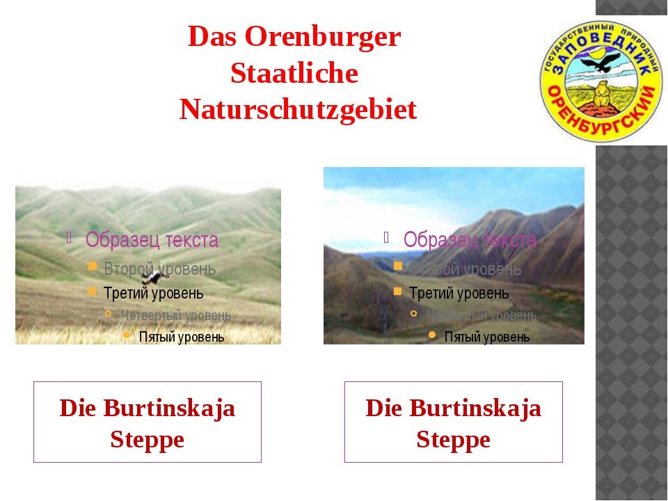Das Orenburger Staatliche Naturschutzgebiet Die Burtinskaja Steppe Die Burtin...