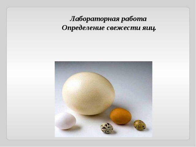 Лабораторная работа Определение свежести яиц.