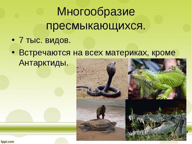 Многообразие пресмыкающихся. 7 тыс. видов. Встречаются на всех материках, кро...