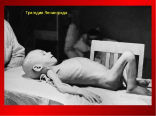 Трагедия Ленинграда