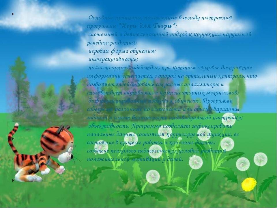 """Основные принципы, положенные в основу построения программы""""Игры для Тигры""""..."""