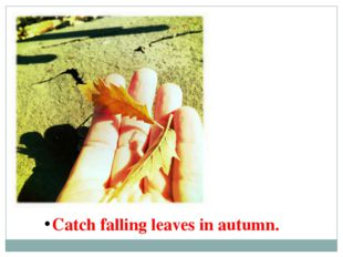 Catch falling leaves in autumn.
