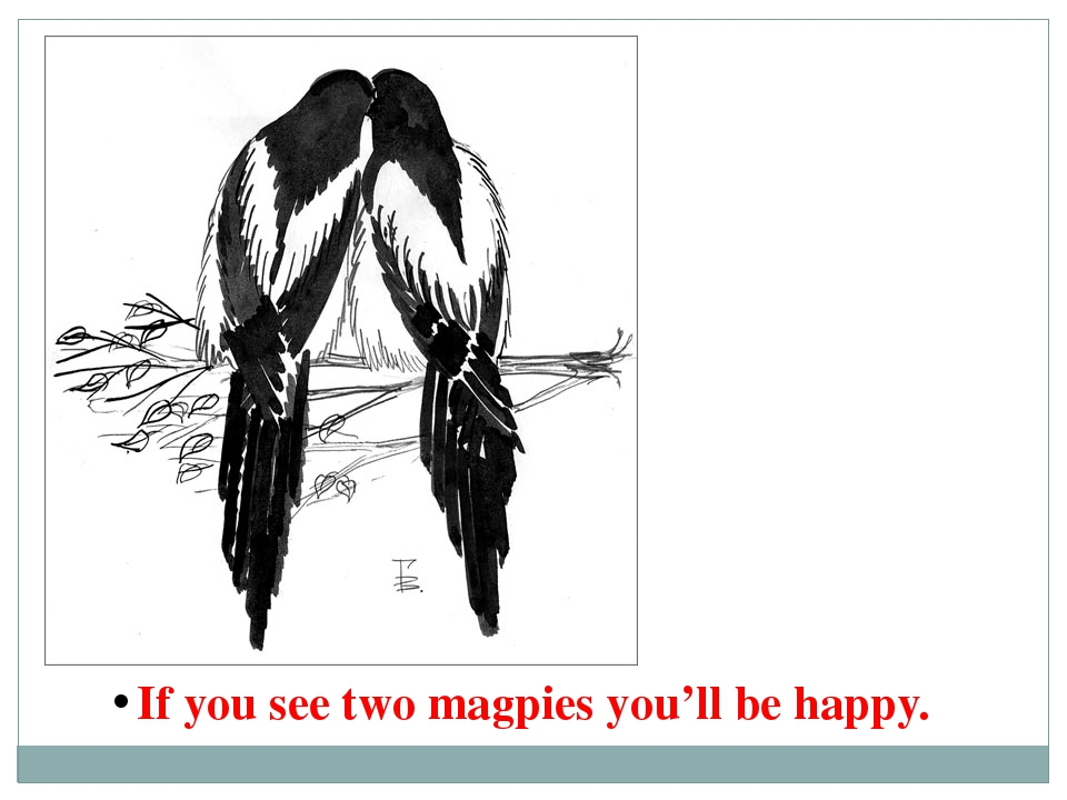 If you see two magpies you'll be happy.