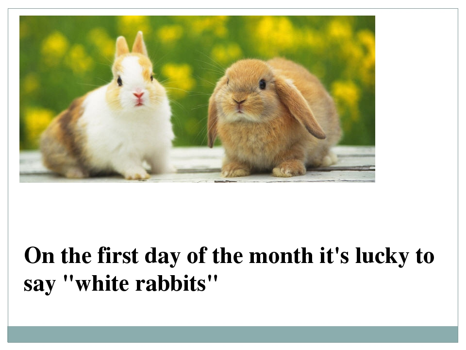 "On the first day of the month it's lucky to say ""white rabbits"""