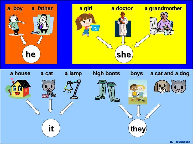 a boy a father a girl a doctor a grandmother a house a cat a lamp high boots...