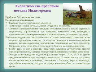 Экологические проблемы поселка Нижегородец Проблема №2: загрязнение почв Пос