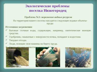 Экологические проблемы поселка Нижегородец Проблема №3: загрязнение водных ре