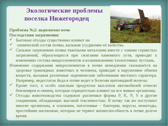 Экологические проблемы поселка Нижегородец Проблема №2: загрязнение почв Пос...