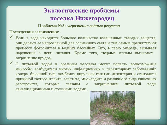 Экологические проблемы поселка Нижегородец Проблема №3: загрязнение водных ре...