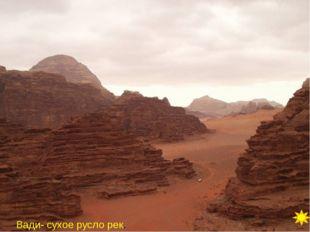 Вопрос 10 Намиб, гепард, папирус, Чад, туареги БЛИЦ.