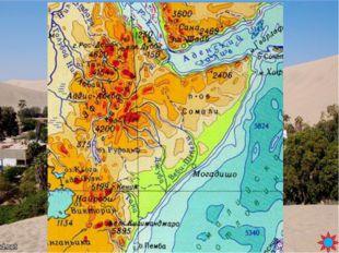 Вопрос 37 Цеце, рафия, Триполи, Юнкер, Бен – Секка БЛИЦ