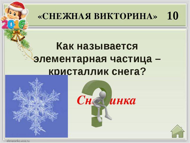 20 Сколько лучиков у снежинки? «СНЕЖНАЯ ВИКТОРИНА» Шесть лучиков