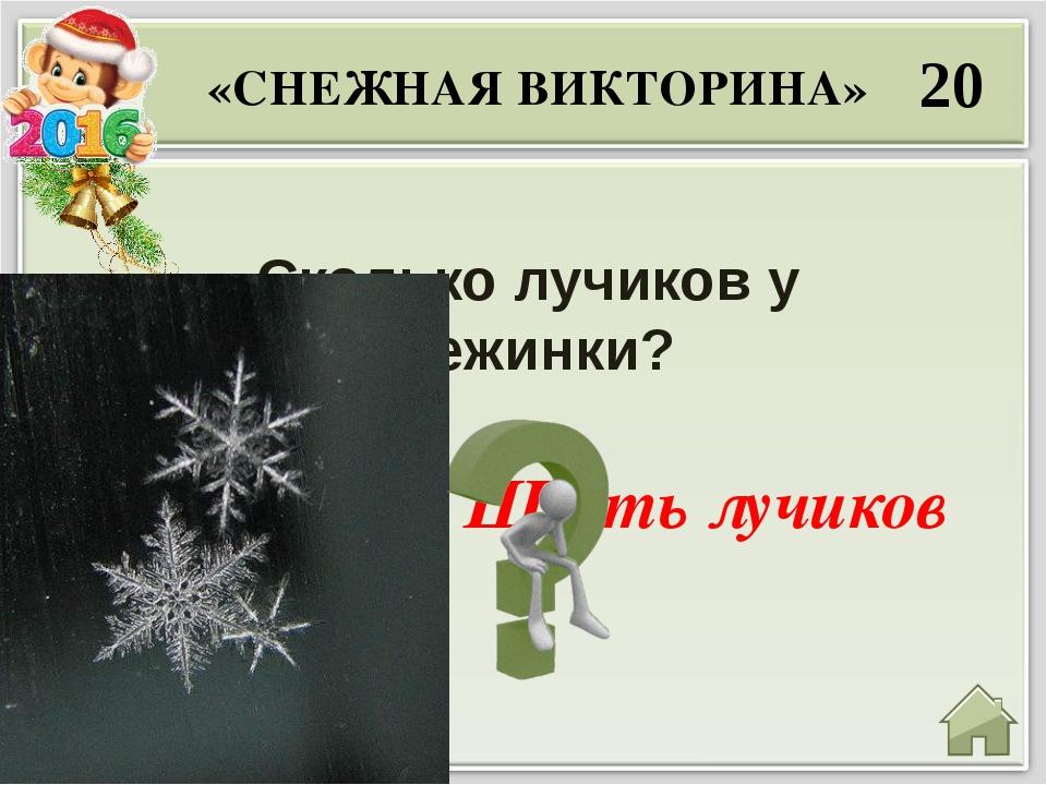 30 Отчего снег под ногами скрипит? «СНЕЖНАЯ ВИКТОРИНА» Скрип вызван трением и...