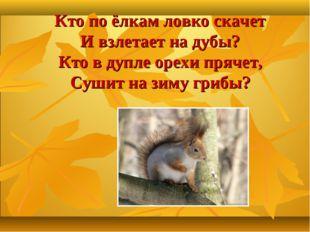 Кто по ёлкам ловко скачет И взлетает на дубы? Кто в дупле орехи прячет, Сушит
