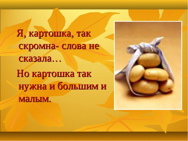 Я, картошка, так скромна- слова не сказала… Но картошка так нужна и большим...