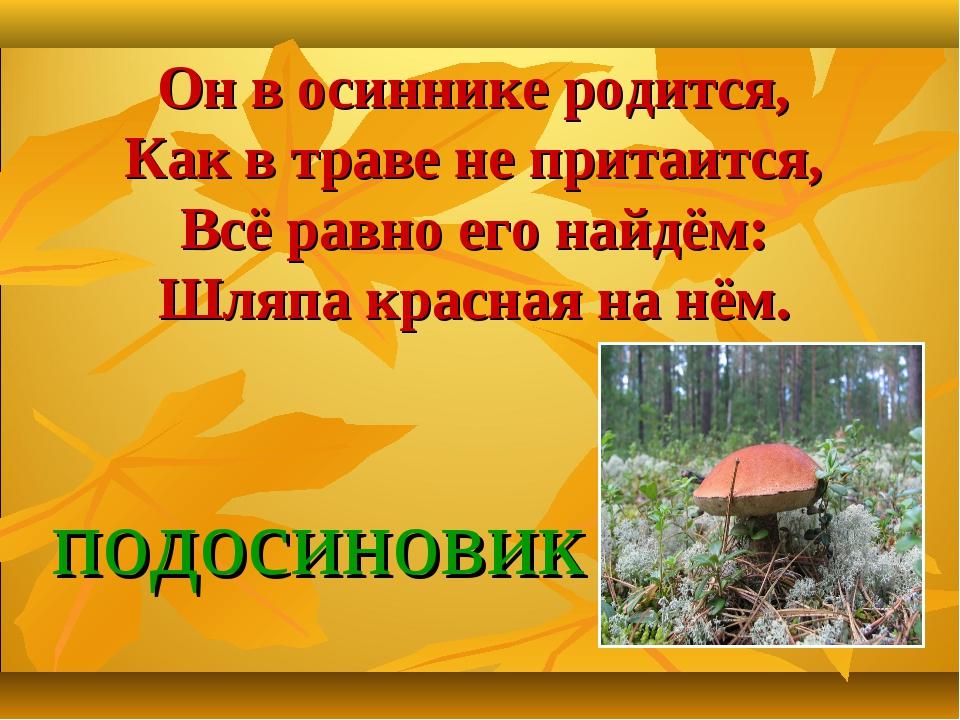 Он в осиннике родится, Как в траве не притаится, Всё равно его найдём: Шляпа...